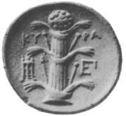 illustration Silphium stalk