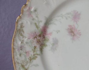 illustration martha's china