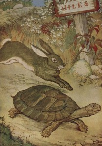 illustration the tortoise and the hare