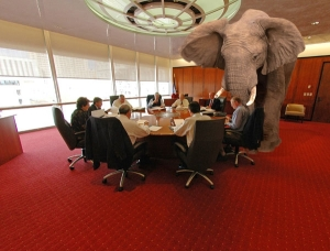 illustration the elephant in the room