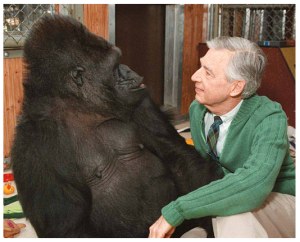 illustration mr rogers visits koko the gorilla